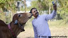 Indien Kühe Kuh Mann macht Selfie mit einer Kuh