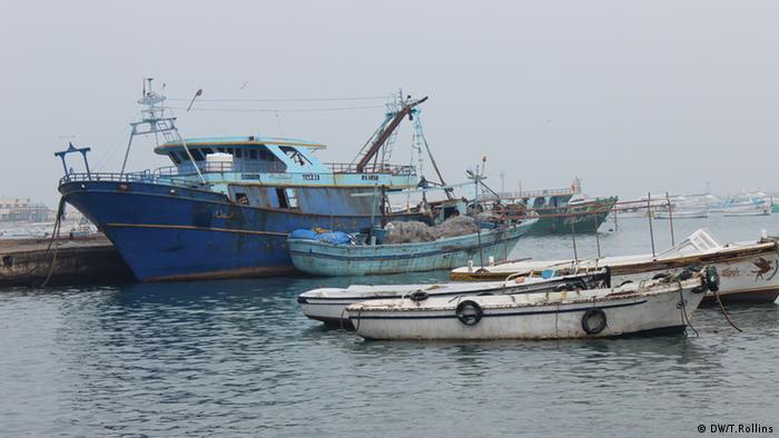 IOM warnt vor neuer Flüchtlingswelle Fischerboote im Hafen von Alexandria