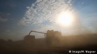 Комбайн убирает зерно на одной из ферм в ФРГ