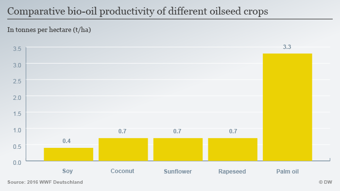 Infografic: Comparative oil seed productivity per hectare