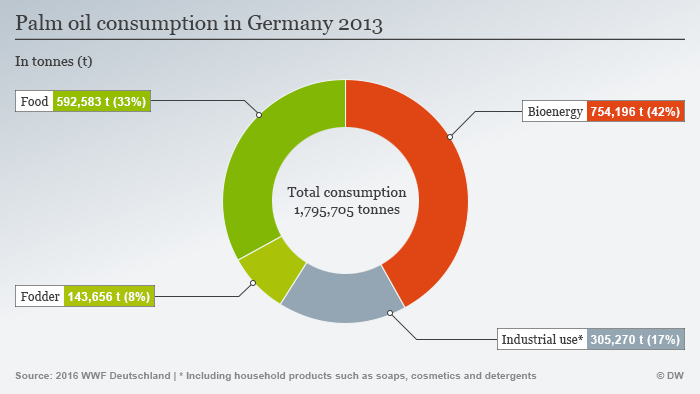 Infografic: Palm oil used for various purposes, Germany 2013