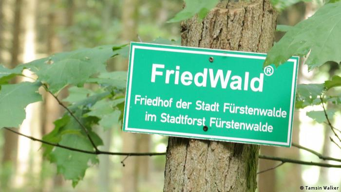 Friedwald sign