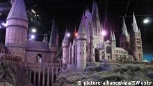 Harry Potter Hogwarts Zauberschule