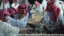 Beduinen in Saudi-Arabien (picture-alliance/dpa/David Lomax/robertharding)