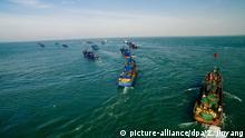 کشتیهای ماهیگیری چینی جهان