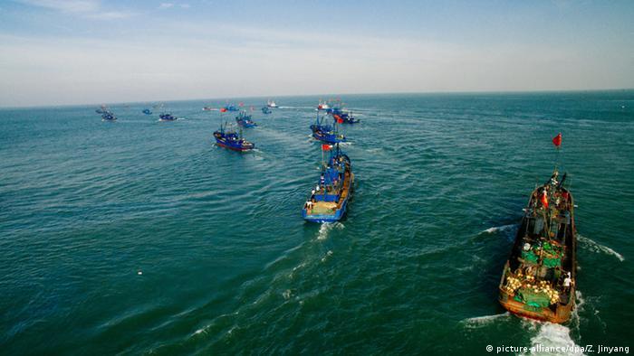 BdW Global Ideas Bild der Woche KW 36/2016 China Fischfang (picture-alliance/dpa/Z. Jinyang)