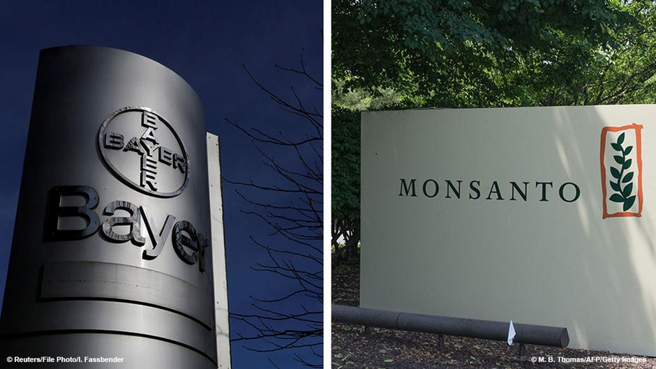 Monsanto accepts sweeter bid from Bayer: reports   Business   DW.COM   14.09.2016