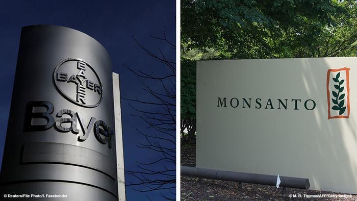 Foto combinada: Bayer-Monsanto