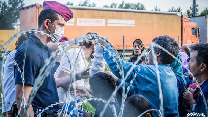 Grenze Ungarn - Serbien - Flüchtlinge