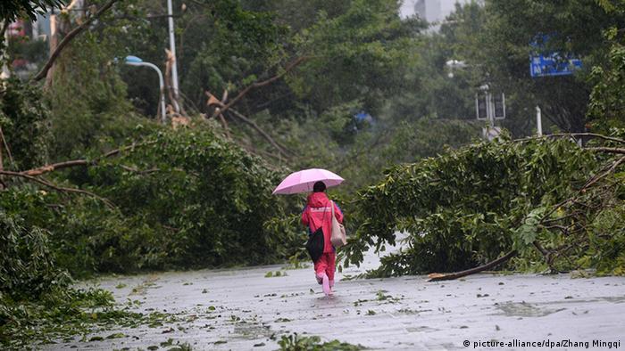 China Xiamen Taifun Meranti Passant zwischen umgestürzten Bäumen