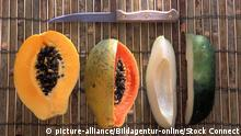 Bambus und Papaya (picture-alliance/Bildagentur-online/Stock Connect)