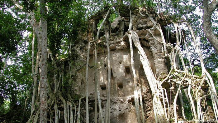 Zugewucherte Mauerreste einer alten Maya-Stadt im Dschungel.