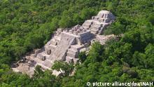 Mexiko Ruine Maya-Stadt Calakmul