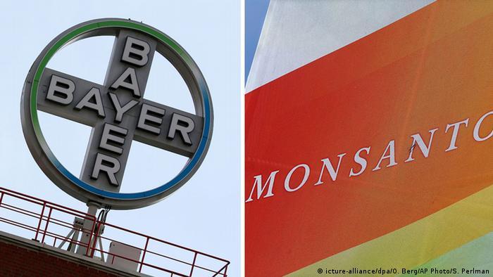 Logos de Bayer y Monsanto.