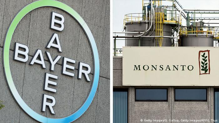 Monsanto, Bayer logos (Getty Images/S. Gallup, Getty Images/AFP/J. Thys)