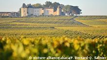 Frankreich Bordeaux Chateau d'Yquem