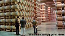 Das Weinlager des Familienunternehmens Castel bei Bordeaux ist das größte Fass-Lager in Europa (Aufnahme von September 2009). 40000 Fässer aus amerikanischer und französischer Eiche sind hier gelagert. Die Fässer werden drei Mal je sechs Monate genutzt. Castel, ein in 80 Staaten präsentes Imperium, nutzt in diesem Jahr erstmals Satellitenaufnahmen der Astrium-Tochter infoterra. Falschfarbenbilder des Satelliten Formosat zeigen eine klare Unterscheidung, wo die Trauben reif und süß sind und wo sie nur schon so aussehen. Die Trauben aus der einen Zone werden dann für fruchtigere Weine genutzt, die anderen für Weine mit Charakter. Foto: Hans-Hermann Nikolei (zu dpa-Korr. Edle Tropfen komponiert mit Hilfe aus dem All vom 30.09.2009) +++(c) dpa - Report+++   Verwendung weltweit (c) picture-alliance/dpa/H.-H. Nikolei