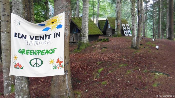 Rumanien Greeenpeace Forest Rescue Camp