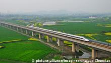 China Brücke Danyang-Kunshan Grand, Rail