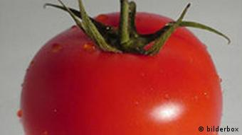 Videobox Tomate