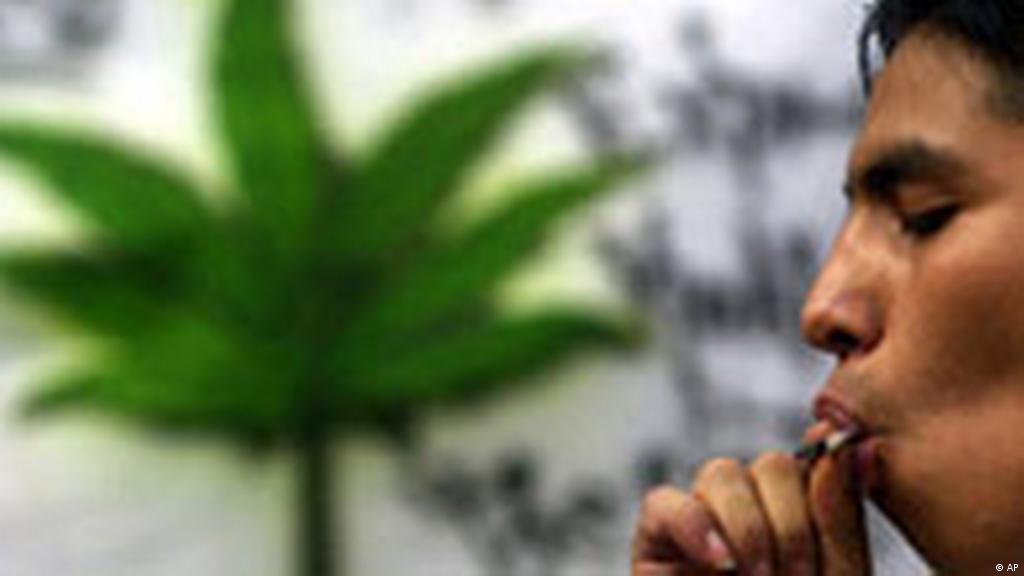 Можно ли в испании курить марихуану как получается марихуана