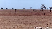 Nigeria Maßnahmen gegen die Wüstenbildung