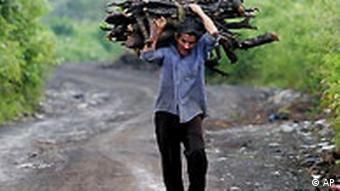 Mann sammelt Brennholz im Regenwald Nicaragua
