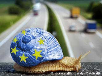 A snail with a European flag painted on her shell
