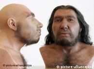 تصميمات  تصورية لإنسان النيندرتال  في متحف بون
