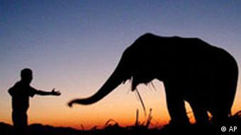 Silhouettes of a man and an elephant against a sunset