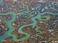 Esteros y lagunas costeras, amenazados por la subida de los mares.