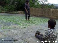 Epifanios kleiner Sohn schaut beim Trocknen der Kokablätter zu