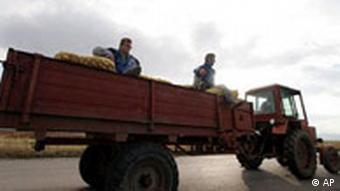 Bulgarien Landwirtschaft Traktor mit Kartoffeln (AP)