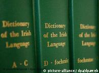 爱尔兰语字典