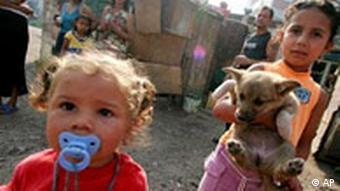 Junge Roma-Kinder spielen mit einem Hund (Quelle: AP)