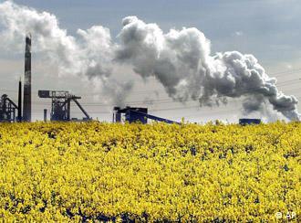 Biokraftstoff Raps