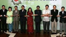 Economic Ministers, from left to right, Lim Jock Hoi of Brunei, Cham Prasidh of Cambodia, Mari Elka Pangestu of Indonesia, Nam Viyaketh of Laos, Soe Tha of Myanmar, Dato Seri Rafidah Aziz of Malaysia, Kamal Nath of India, Peter Favila of Philippines, Lim Hng Kiang of Singapore, Krik-Krai Jirapaet of Thailand, and Troung Dinh Tuyen of Vietnam, pose for a group photo at the start of the ASEAN India Economic Minister's Meeting leading to the summit of the leaders Thursday Jan. 11, 2007, in Mactan, Cebu province in central Philipppines. (AP Photo/Eugene Hoshiko)
