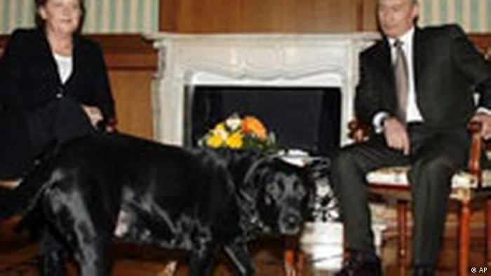 Merkel und Putin mit Hund in Sotschi