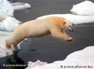 El cambio climático está acabando con el Ártico.