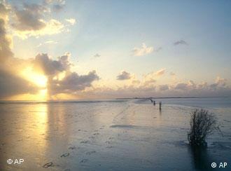The Hamburg Wadden Sea