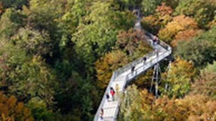 BdT Wetter Deutchland Herbst (AP)