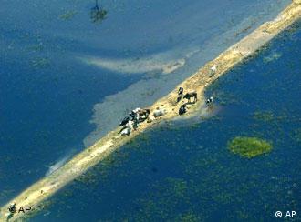 Klimaflüchtlinge auf einer dünnen Insel (AP Photo/ Juan Karita)