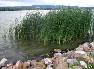 En Hongrie, le lac Balaton, plus grand lac d'Europe, attire une foule de touristes.