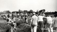 Häftlinge aus dem Konzentrationslager Neuengamme heben den Stichkanal vom Klinkerwerk zur Dove-Elbe aus (Foto der SS, etwa von 1941/42). Rund 100000 Menschen waren in dem Lager gefangen, von denen etwa die Hälfte den Naziterror nicht überlebte. Inzwischen ist auf dem Gelände des ehemaligen KZ in Hamburg-Neuengamme auf 70 Hektar ein Ausstellungs-, Begegnungs-, und Studienzentrum entstanden, das bis Anfang Mai 2005 neu gestaltet wurde. Ein Gefängnis auf dem ehemaligen KZ-Gelände hatte bis dahin jahrelang die Erweiterung der Gedenkstätte verhindert. dpa/lno (zu dpa-Korr:Lernen auf dem Friedhof - Studienzentrum KZ-Gedenkstätte Neuengamme vom 09.07.2005) +++(c) dpa - Report+++