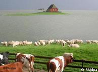 En Alemania el agua es omnipresente. ¿Una fortuna? Tormenta de otoño en la isla alemana de Halligen.