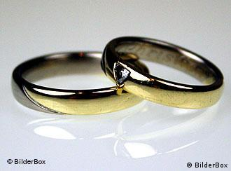 Wedding rings lying on a red rose blossom