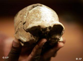 A Man holds part of a skull