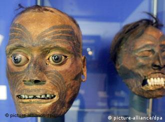Two mumified heads from New Zealand, part of the Mannheim collection