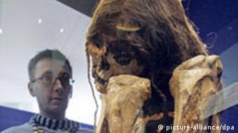 A member of the museum staff checks on oen of the mummies