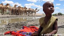 ARCHIV - Ein kleiner kenianischer Junge sitzt in Nordkenia an einer Wasserstelle, an der sich gerade eine Kamelherde aufhält (Archivfoto vom 14.04.2006). Der UN-Klimarat hat am Freitag (04.05.2007) in Bangkok den dritten Teil seines neuen Klimaberichts vorgelegt. Er beschäftigt sich mit den möglichen Mitteln gegen den Klimawandel. Der Menschheit bleiben nur noch acht Jahre, um eine Klimakatastrophe abzuwenden, heißt es darin. Spätestens von 2015 an muss der weltweite Treibhausgasausstoß sinken, wenn die schlimmsten Folgen der Erderwärmung verhindert werden sollen. Die Kosten für eine Eindämmung des Klimawandels halten sich nach Einschätzung des UN-Klimarats IPCC derzeit noch in Grenzen. +++(c) dpa - Bildfunk+++
